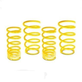 ST Sport Springs for Audi A4